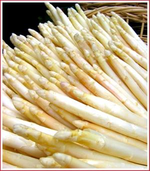 20070407_white_asparagus