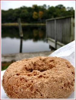 20061019_doughnut