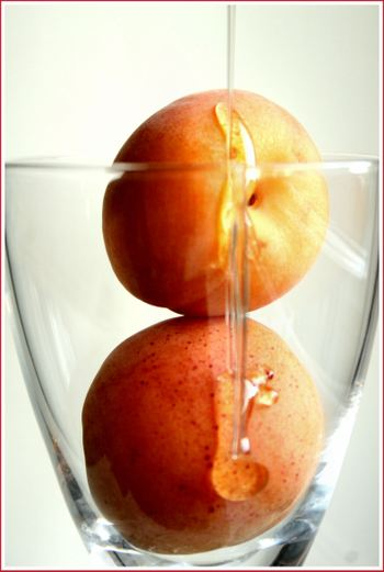 Honeyapricots2compressed