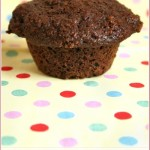 Cranberry apple bran muffins – virtue never tasted so good