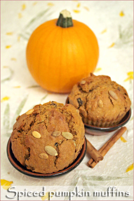 Spiced-pumpkin-muffins