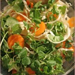 Crunchy carrot, cress & cabbage salad