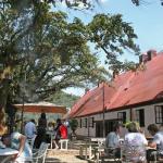 Irene Dairy Farm, Gauteng