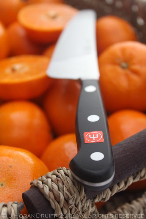 Clemengold Wuesthof knife © J Horak-Druiff 2012