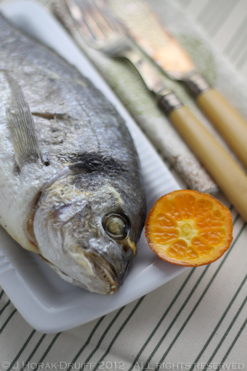 Gilthead bream with clementines 1 © J Horak-Druiff 2012
