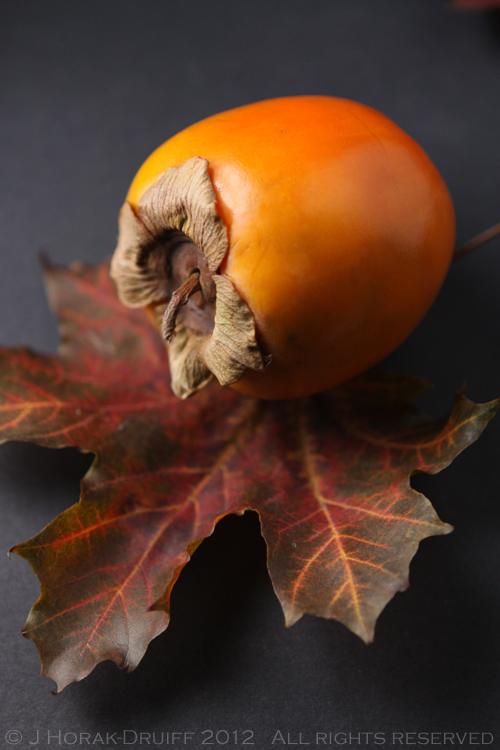 Persimmons 1 © J Horak-Druiff 2012