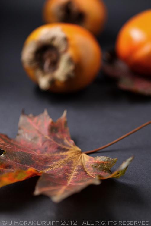 Persimmons leaf © J Horak-Druiff 2012