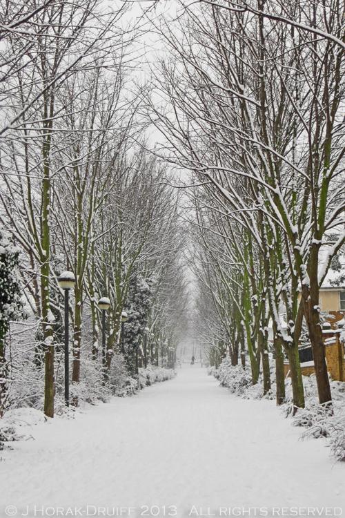 Snowy walk © J Horak-Druiff 2013
