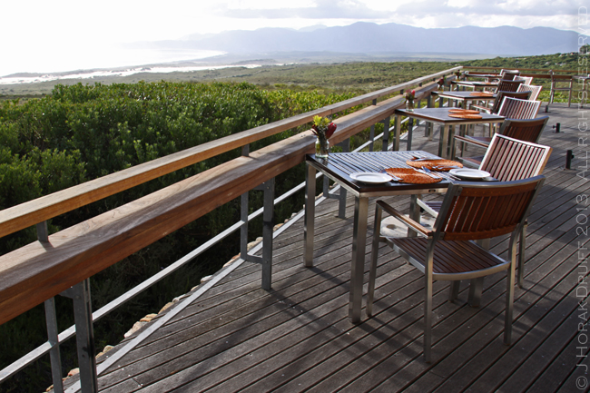 Post image for Grootbos Part 1 – the resort