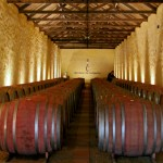 Herdade de Comporta, land of wine and rice – Costa Alentejana part 2