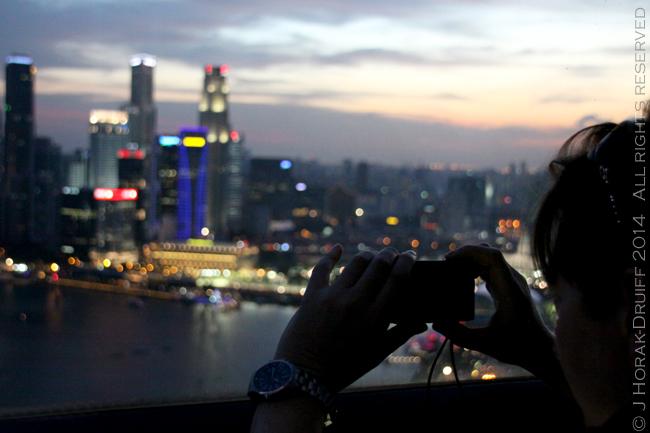 SingaporeF1FlyerPodView2 © J Horak-Druiff 2014