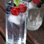 Very berry G&Ts – #LetsCocktail!