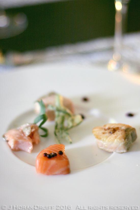 Tasteology-Salmon