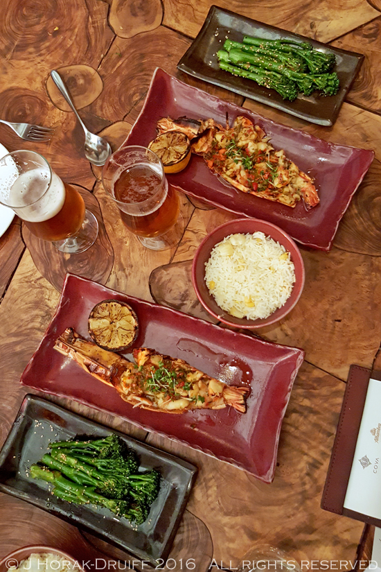 Coya matching spanish beer and peruvian food cooksister food coyaflatlay forumfinder Gallery