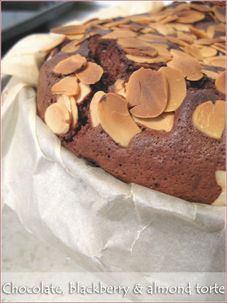 chocolate-blackberry-almond-torte