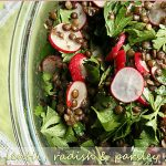 Lentil-radish-parsley-salad