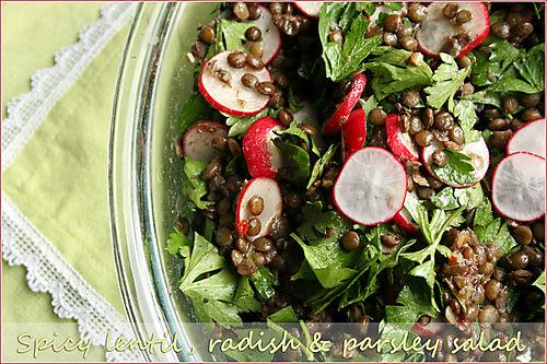 Lentil-radish-parsley-salad
