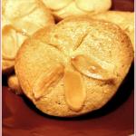 Pansyshell cookies – WTSIM#3