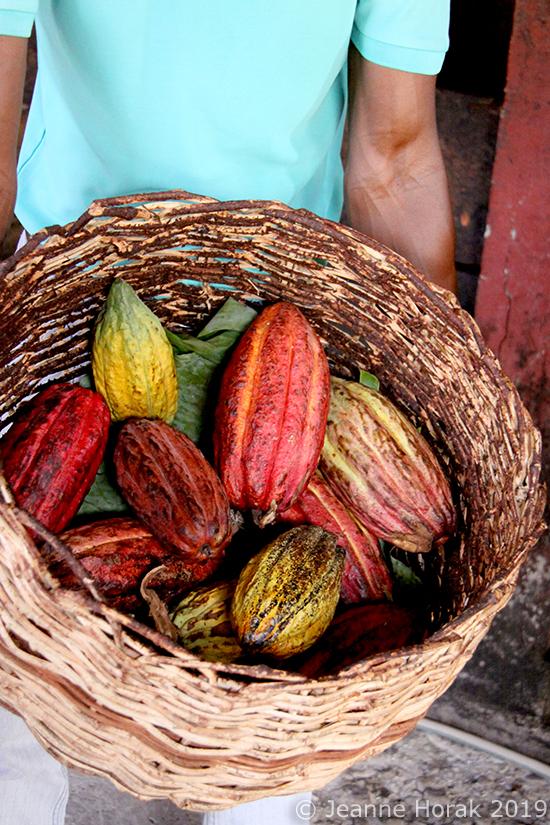 Grenada-Belmont-Cocoa-pods © Jeanne Horak 2019
