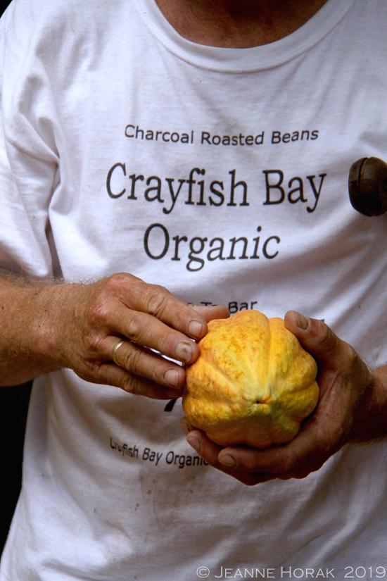 Grenada-crayfish-bay-kim-russell-cocoapod2 © J Horak 2019